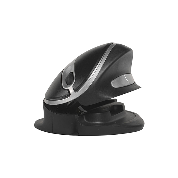 Oyster Mouse Large Wireless