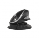 Oyster Mouse Wireless - ergonomische muis
